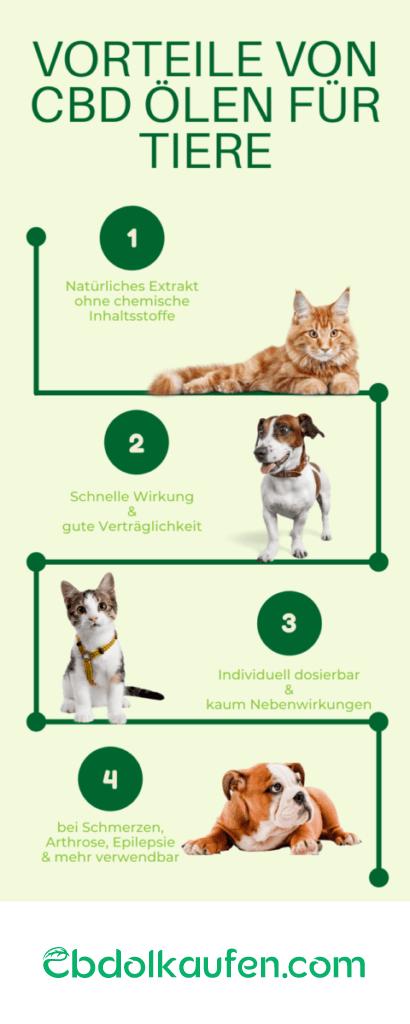 Vorteile von CBD Öl für Tiere