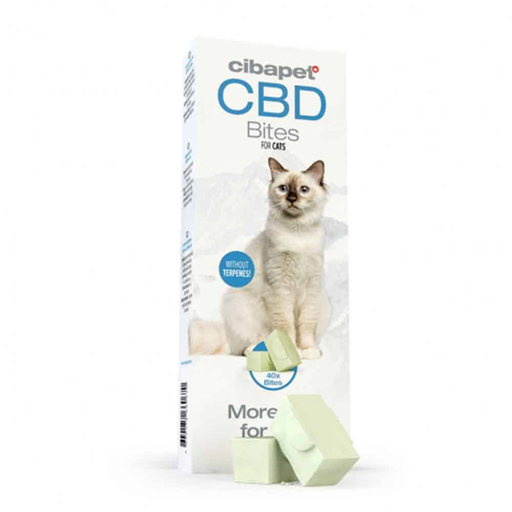 CBD Katzensnack