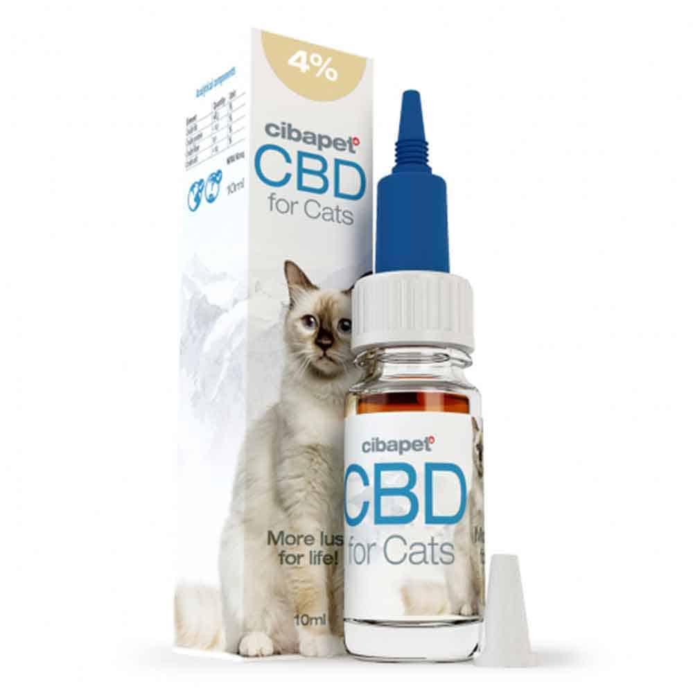 CBD Öl 4% für Katzen