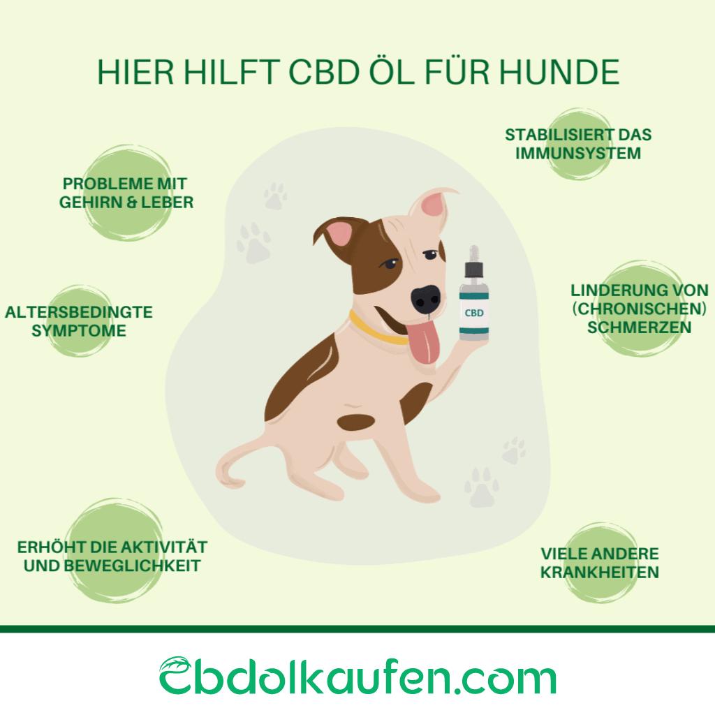 CBD Öl für Hunde hier hilft cbd öl für hunde